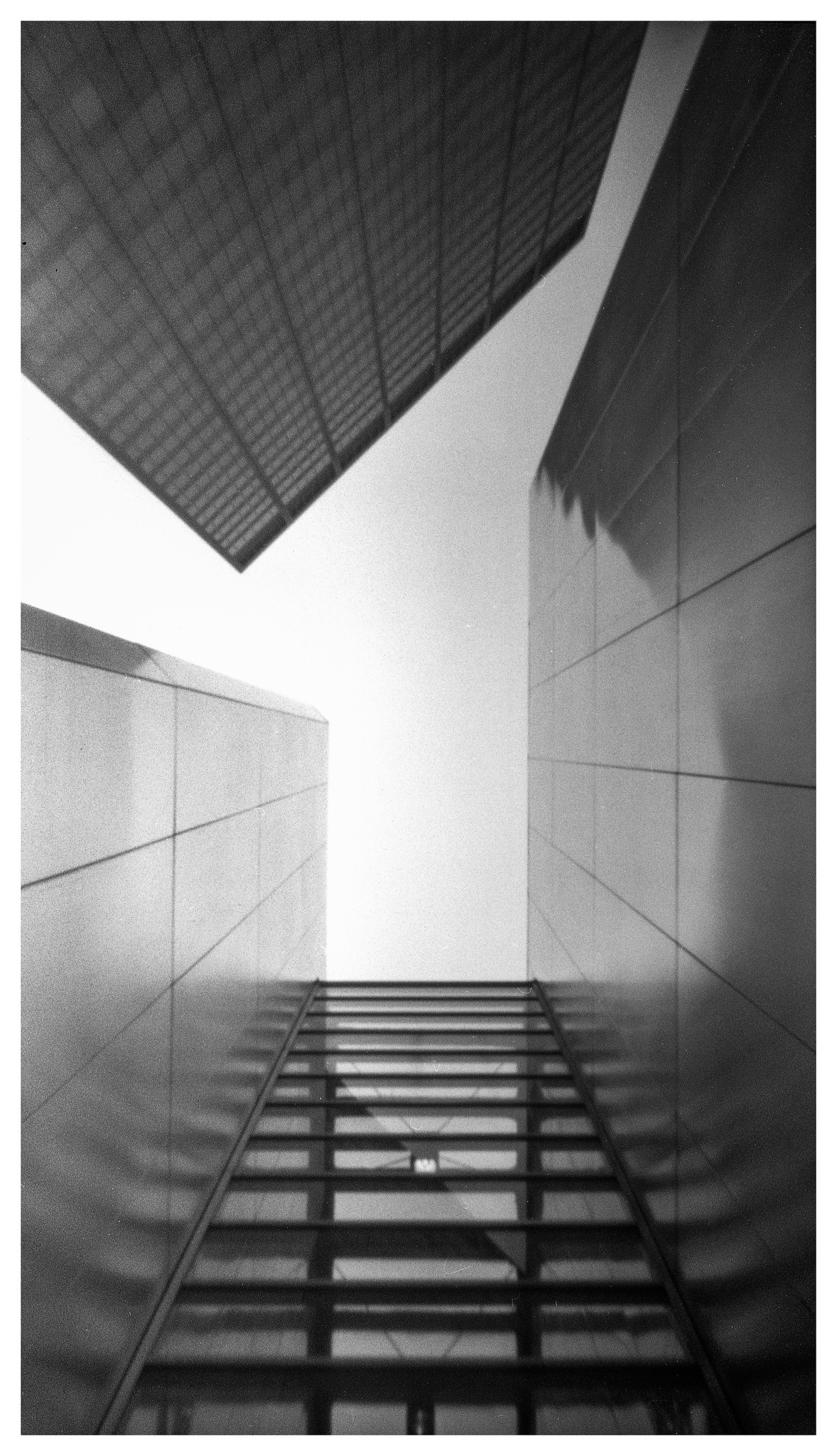 Looking Up - NOON 612 Pinhole with HP5+ film