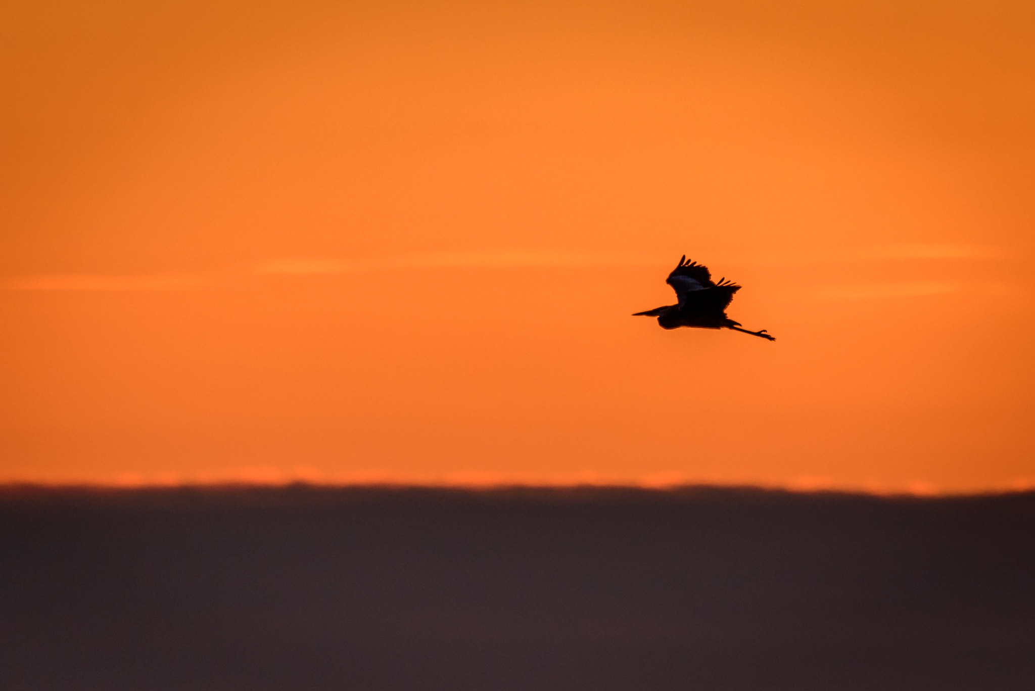 Sunrise at Killdeer Plains.