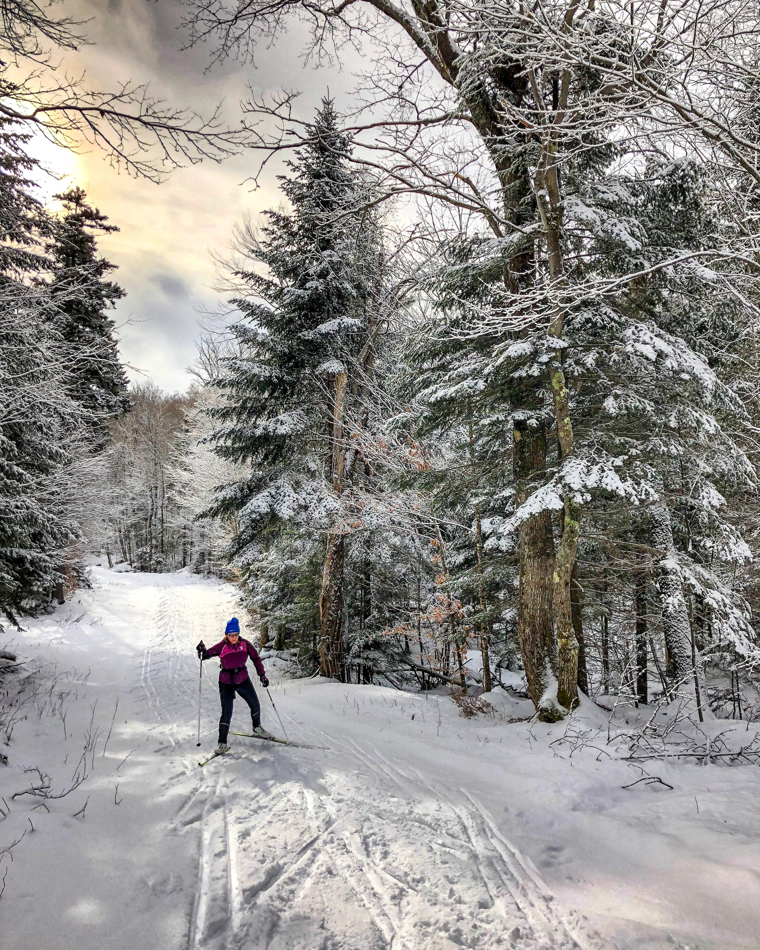 ski cross country.jpg