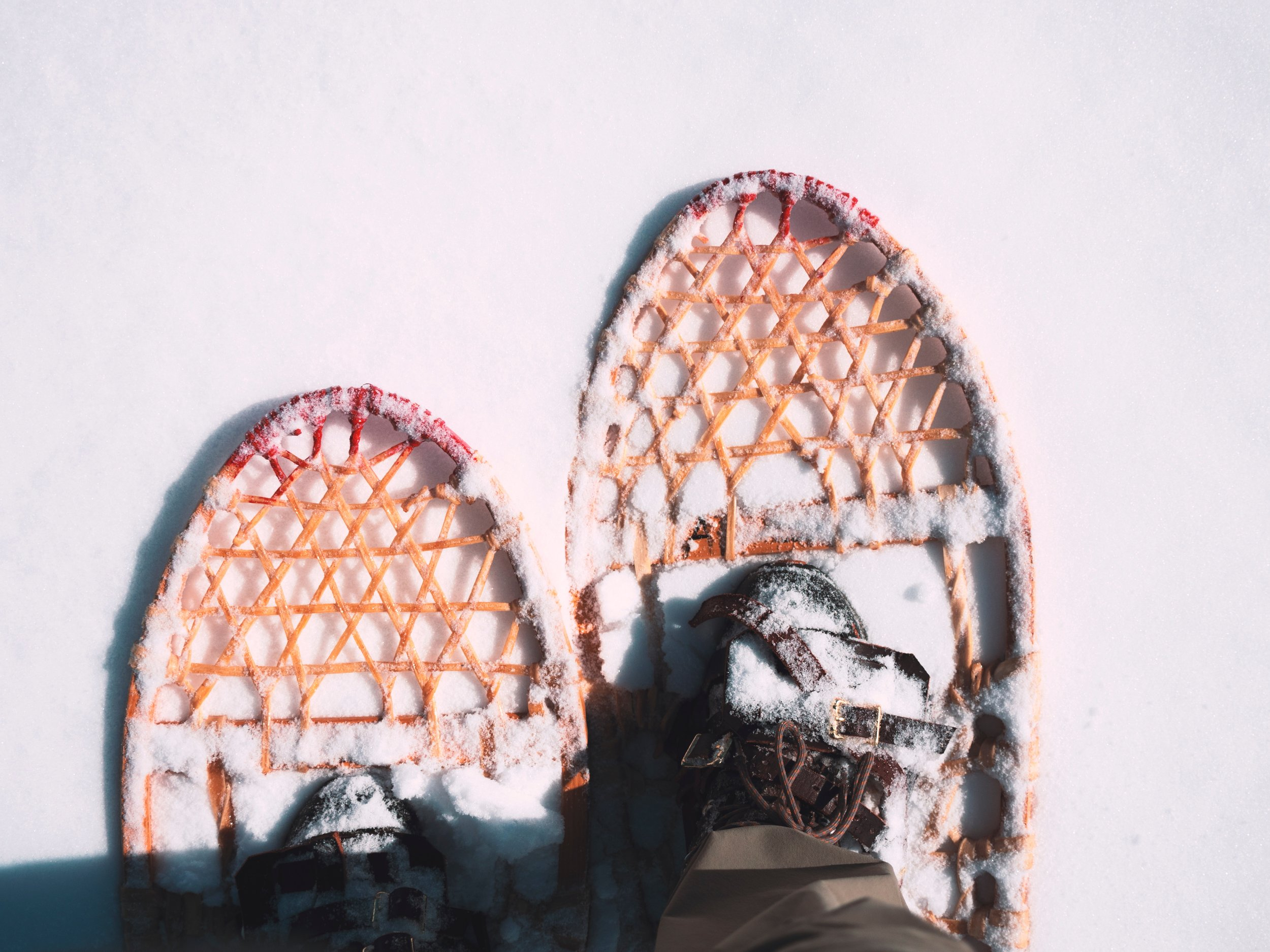 ski snowshoeing.jpg
