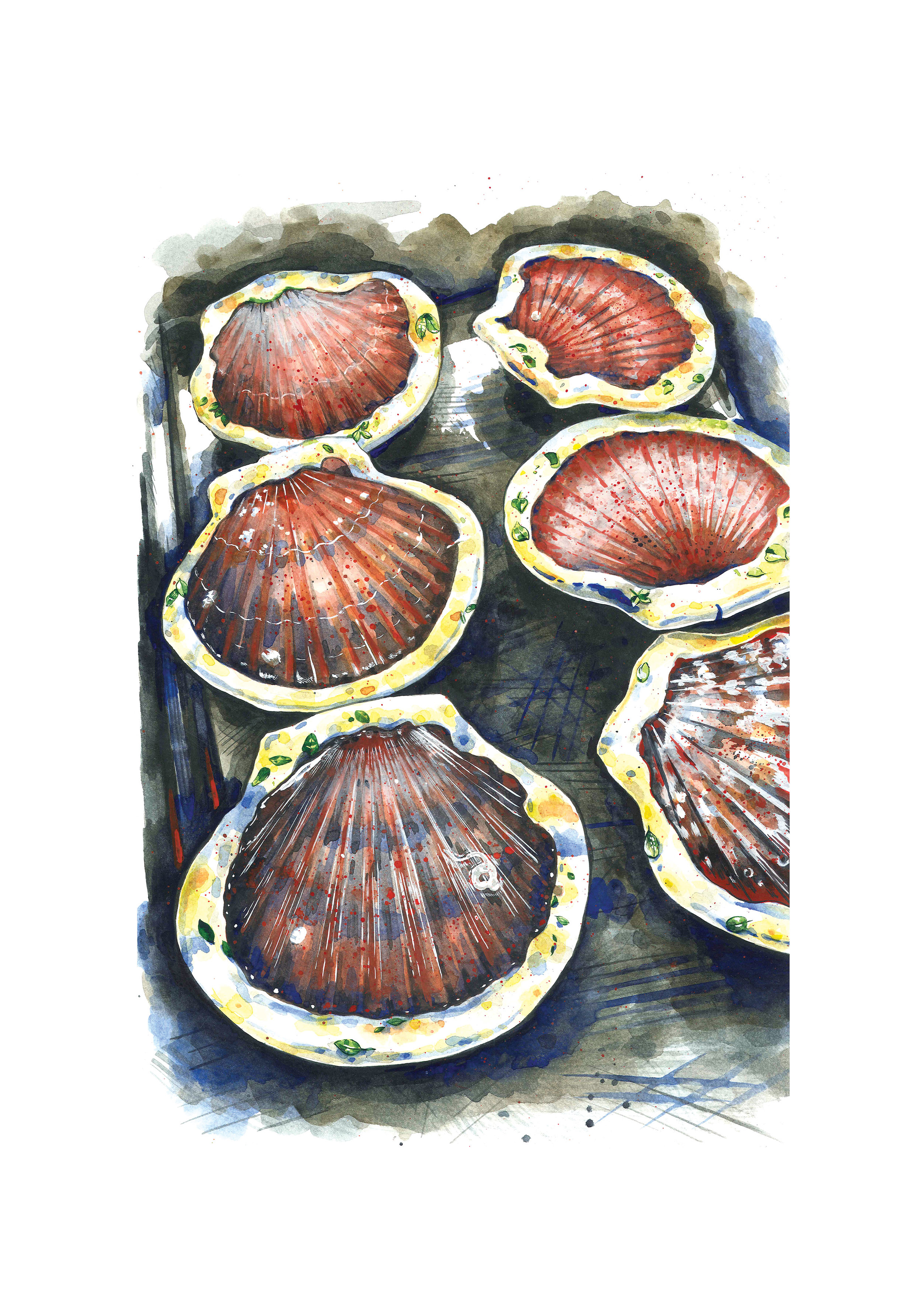 Scallops 70x100 for web.jpg