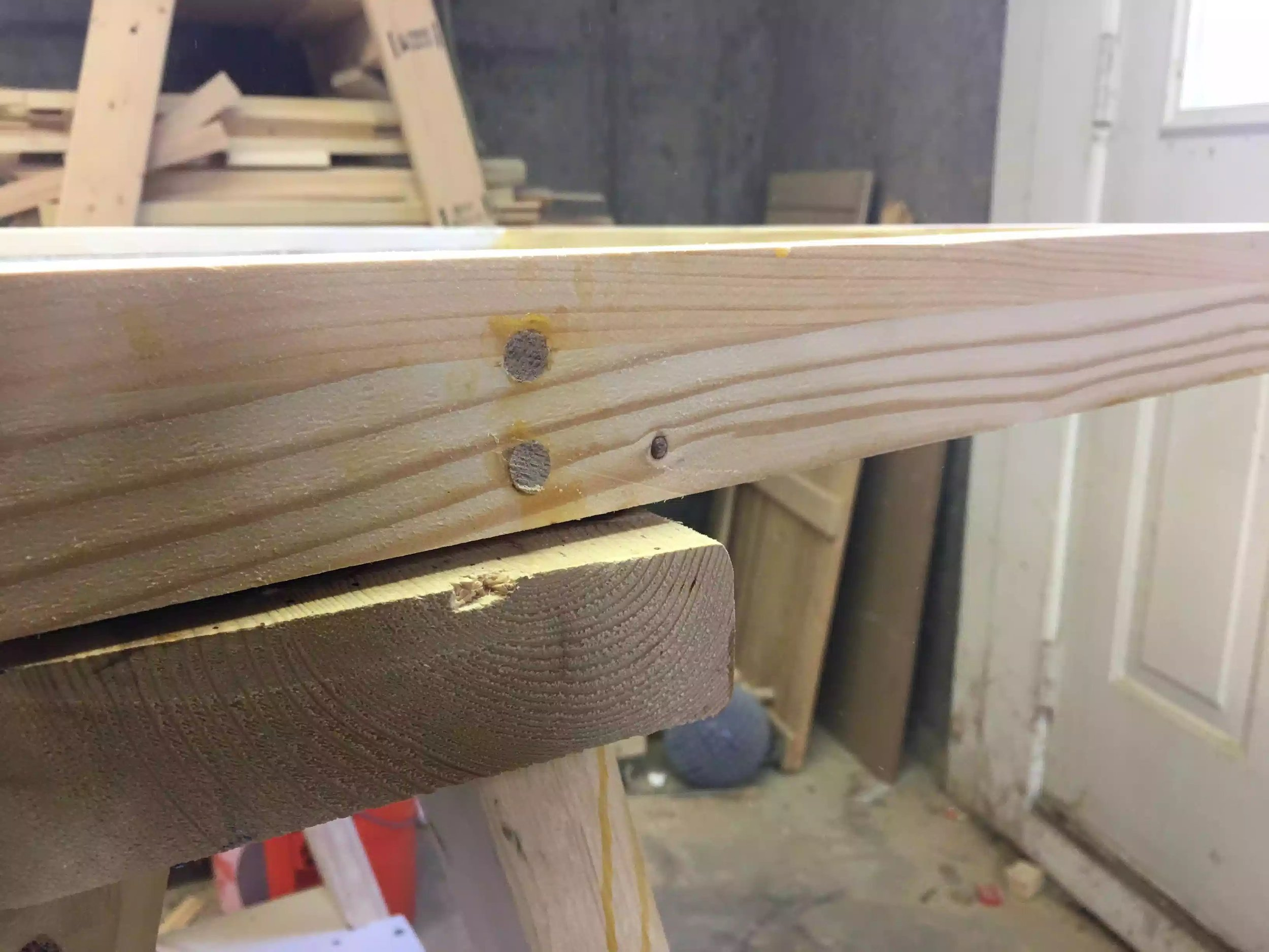 You can see the plugs here after I used my flush trim saw but before sanding them.