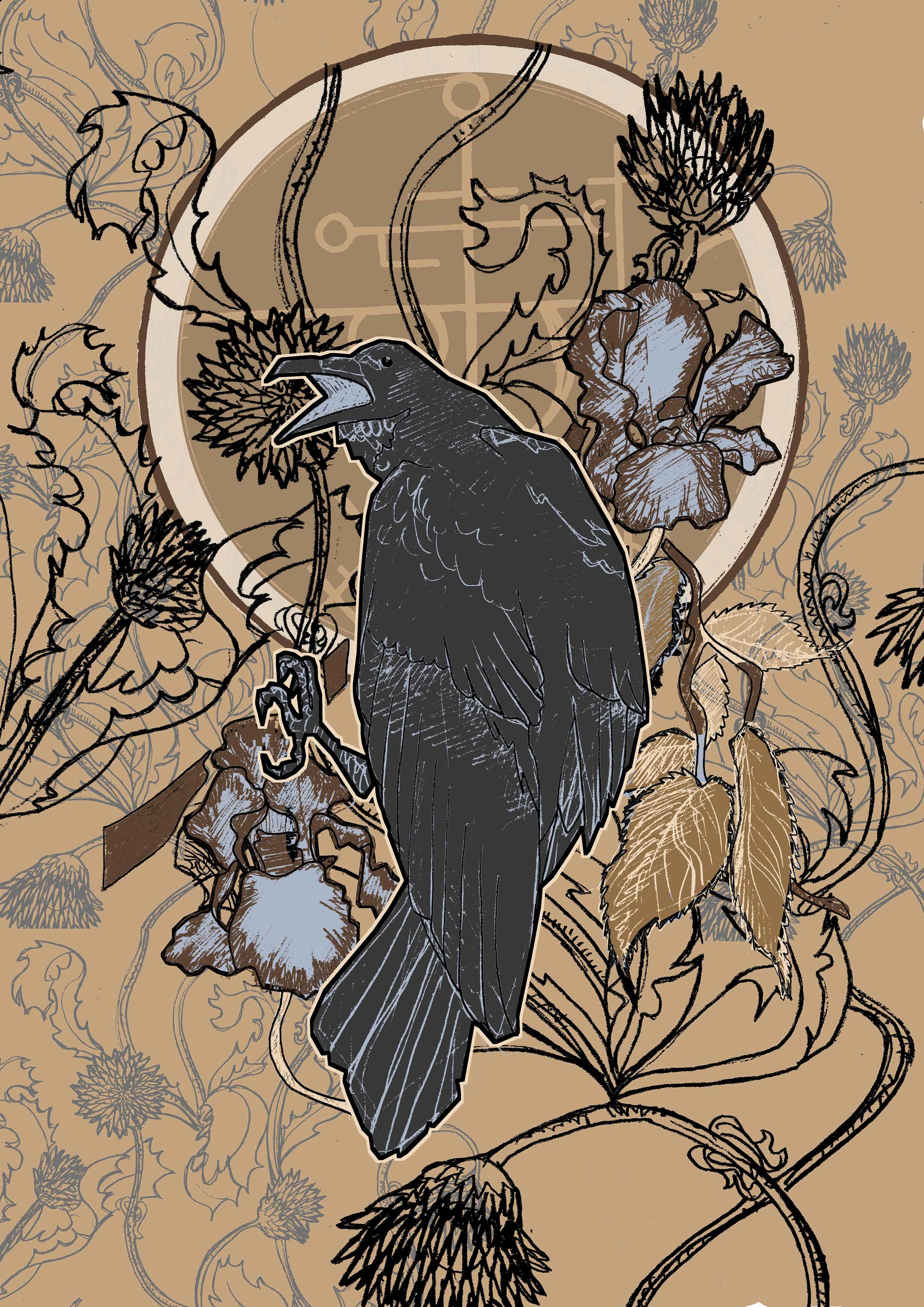 Toby Curden Illustration-ravencolour3.jpg