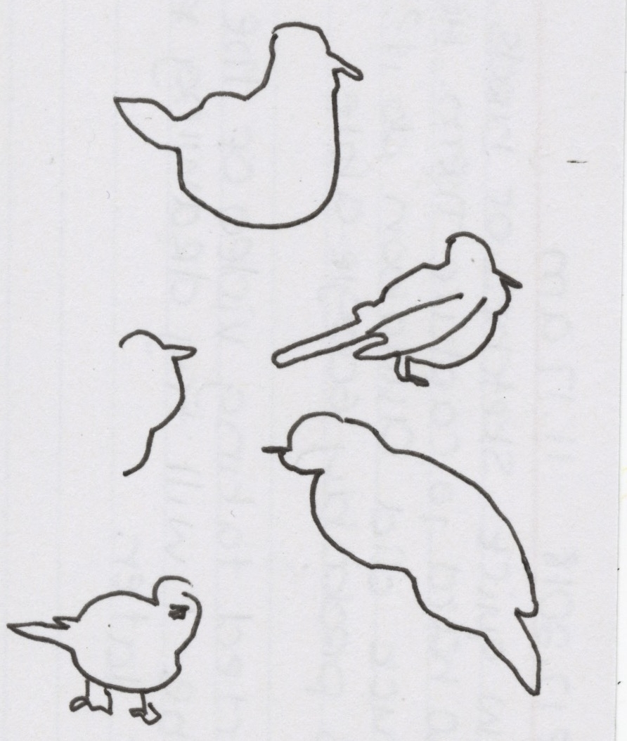 June 17, 2018 11:17 AM - A few quick sketches of birds. It's so hard to capture them. How the fuck did Audoon do it? That's probably Googleable. I started taking video of the birds. Maybe I will try drawing from that later.