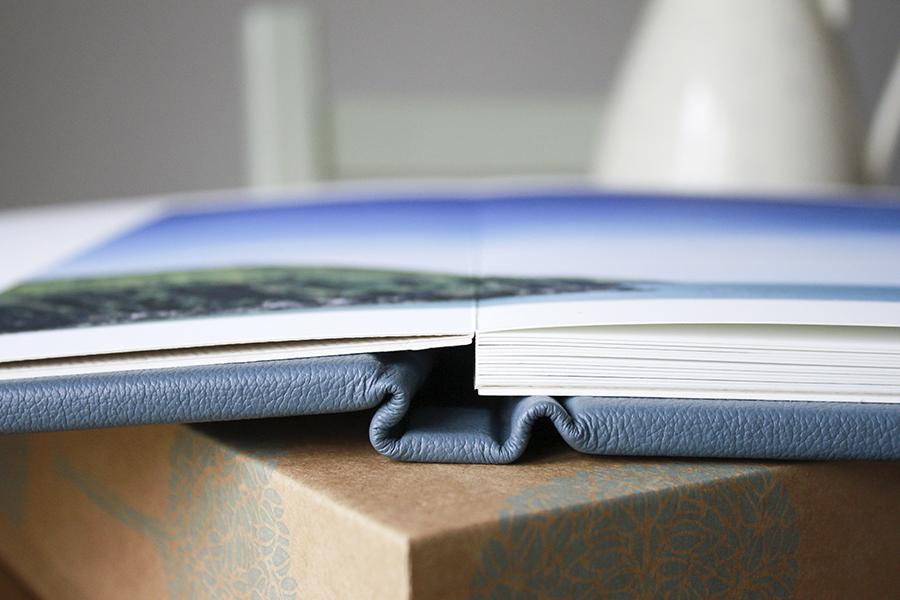 Fine_Art-Book_001.jpg