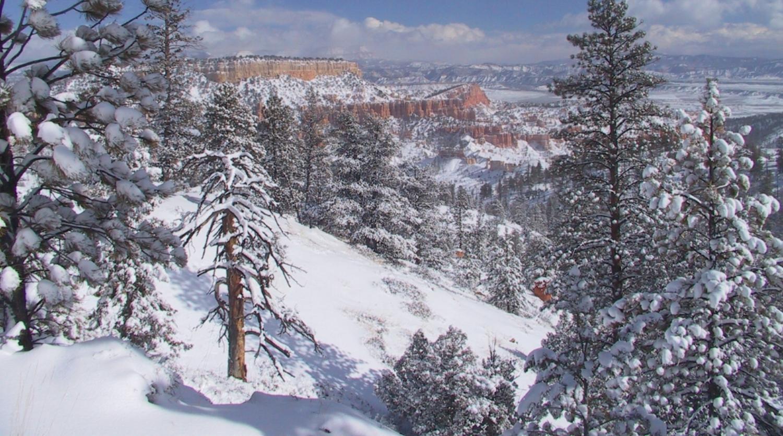 Bryce Canyon Winter.jpg