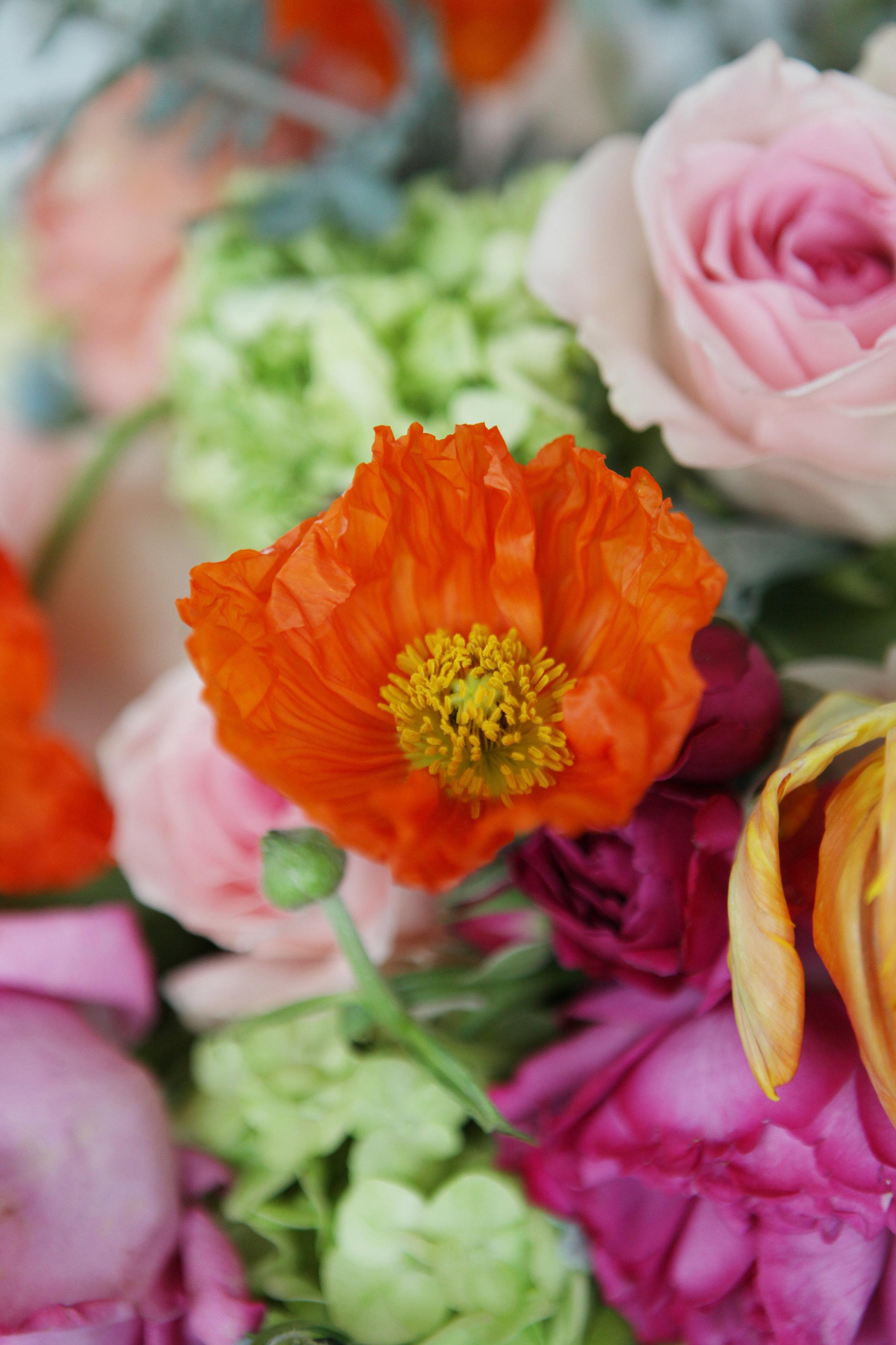 Studio C Floral | Floral Delivery