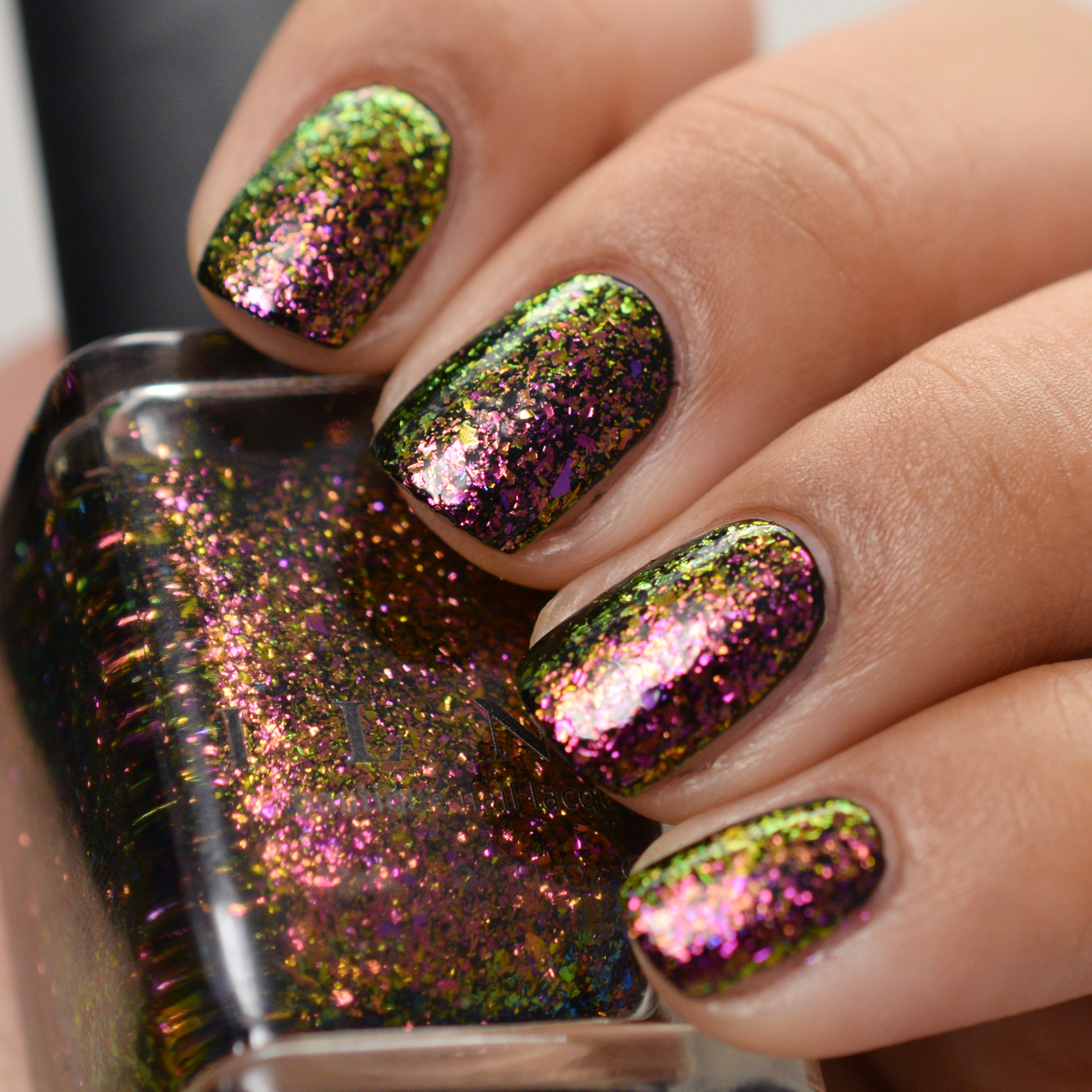 ILNP Ultra Chrome Flakies 2014 - Electric Carnival 2.jpg
