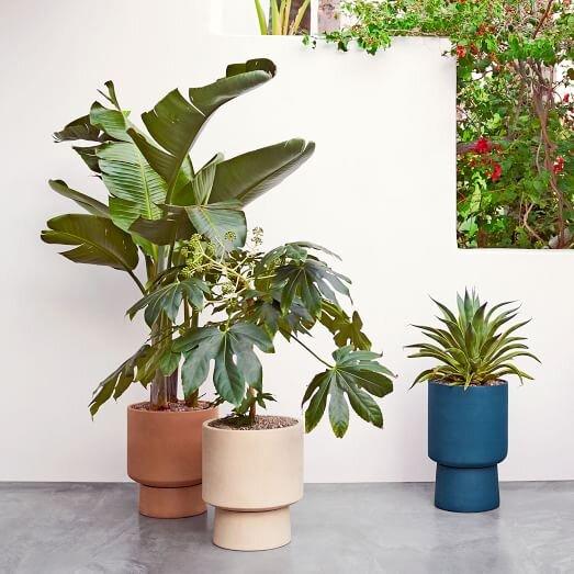 bishop-pedestal-planters-1-c.jpg