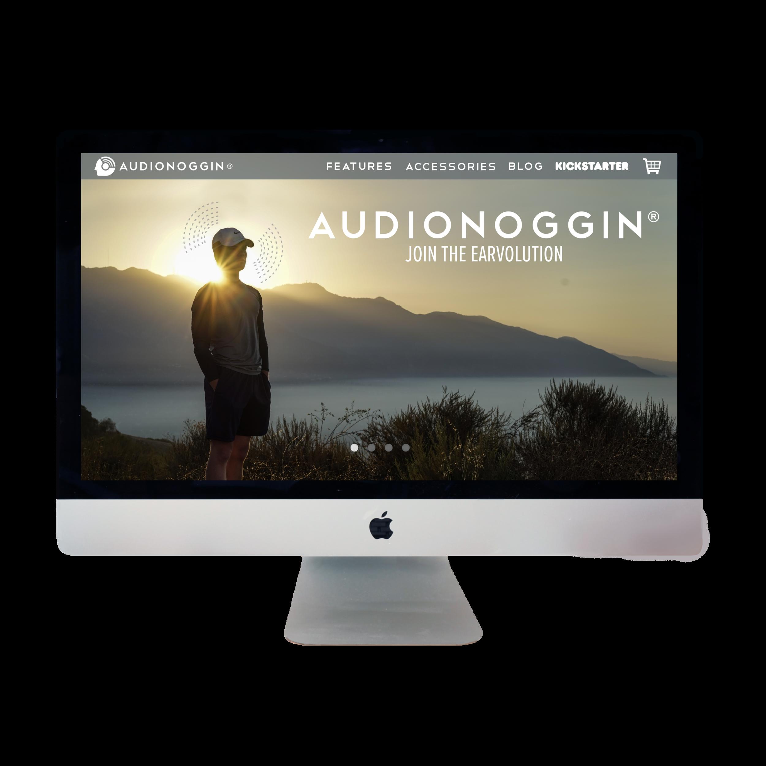 AudioNoggin