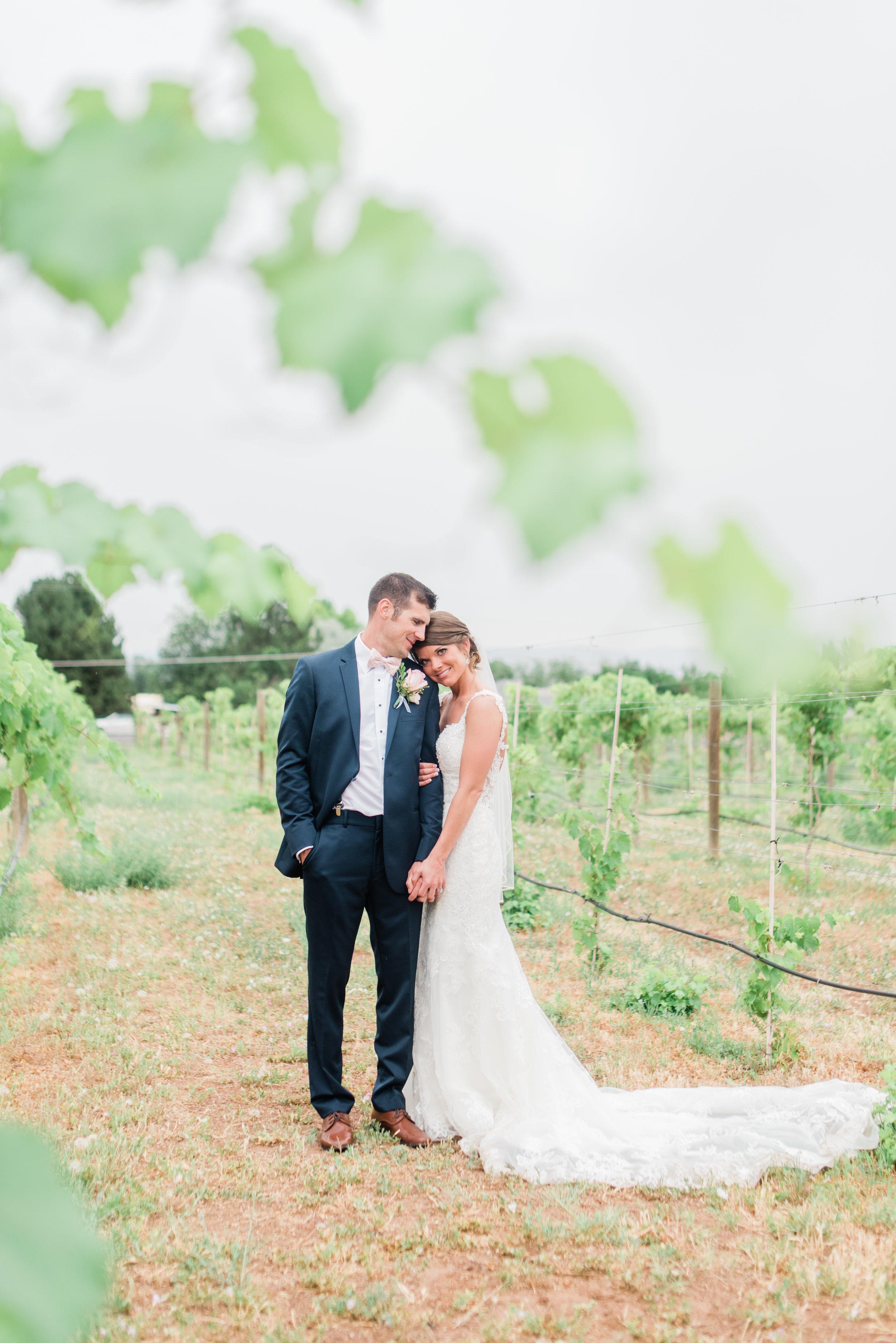 Colorado Vineyard Wedding - Chelsea & Kevin