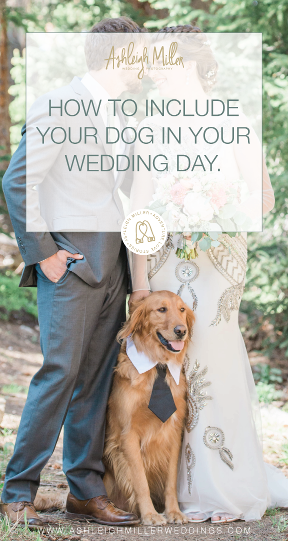 3-21-18-AshleighMillerPhotography-TipsforClients-includedogweddingday-Mts-2.png