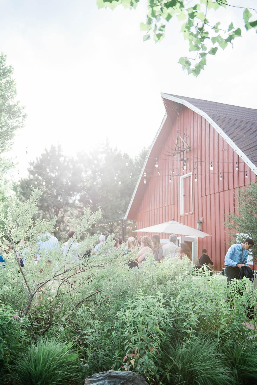 2019-07-06-Wedding-Emily-Tyler-Chatfield-BotanicalGardens-2642.jpg