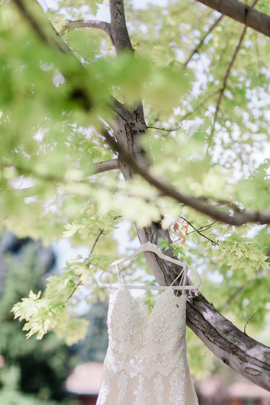 2019-07-06-Wedding-Emily-Tyler-Chatfield-BotanicalGardens-4411.jpg