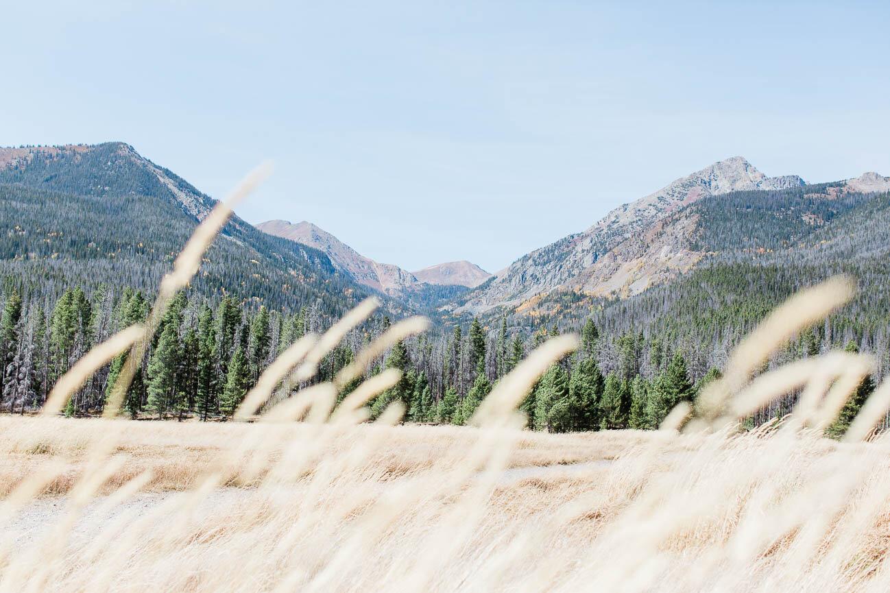 AshleighMillerPhotography-Wedding-BeccaWeston-WindingRiverRanch-GrandLake-Colorado-20.jpg