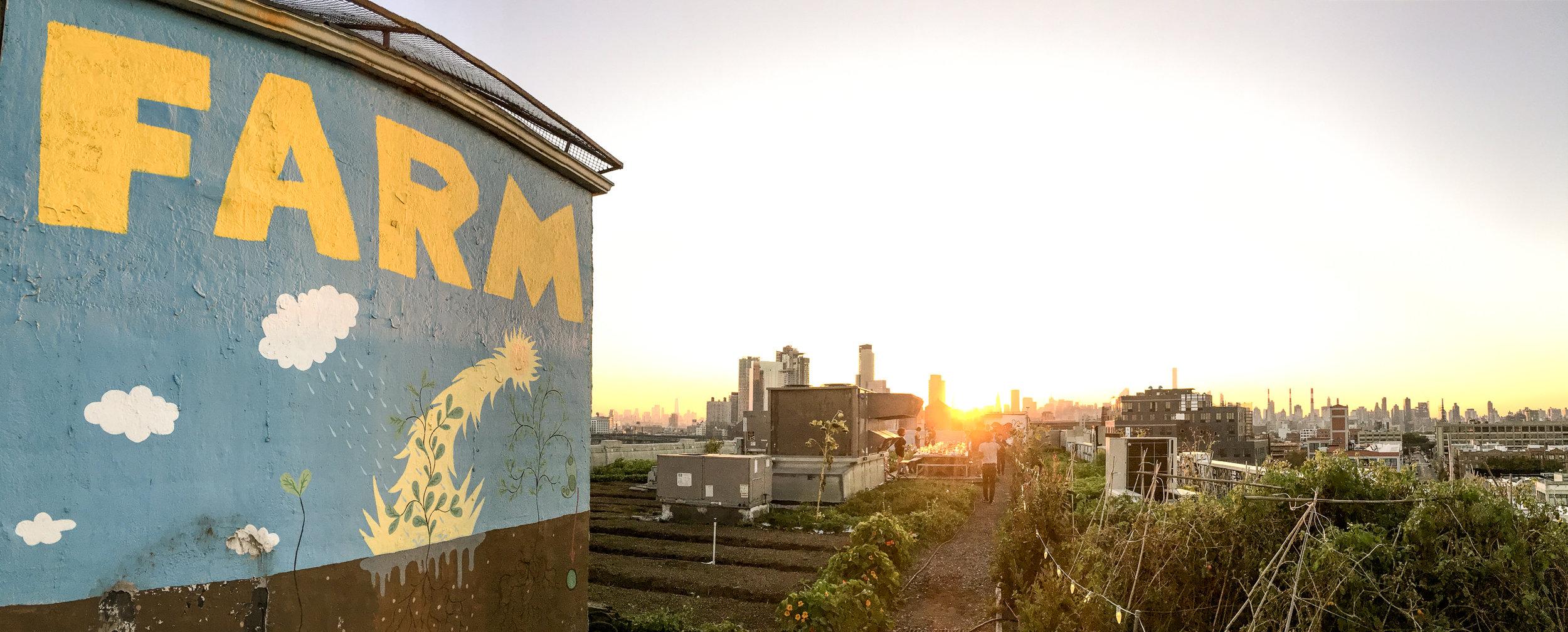 Brooklyn Grange Dinner | leavethesandwich.com #brooklyngrange #farm #nyc #travelideas