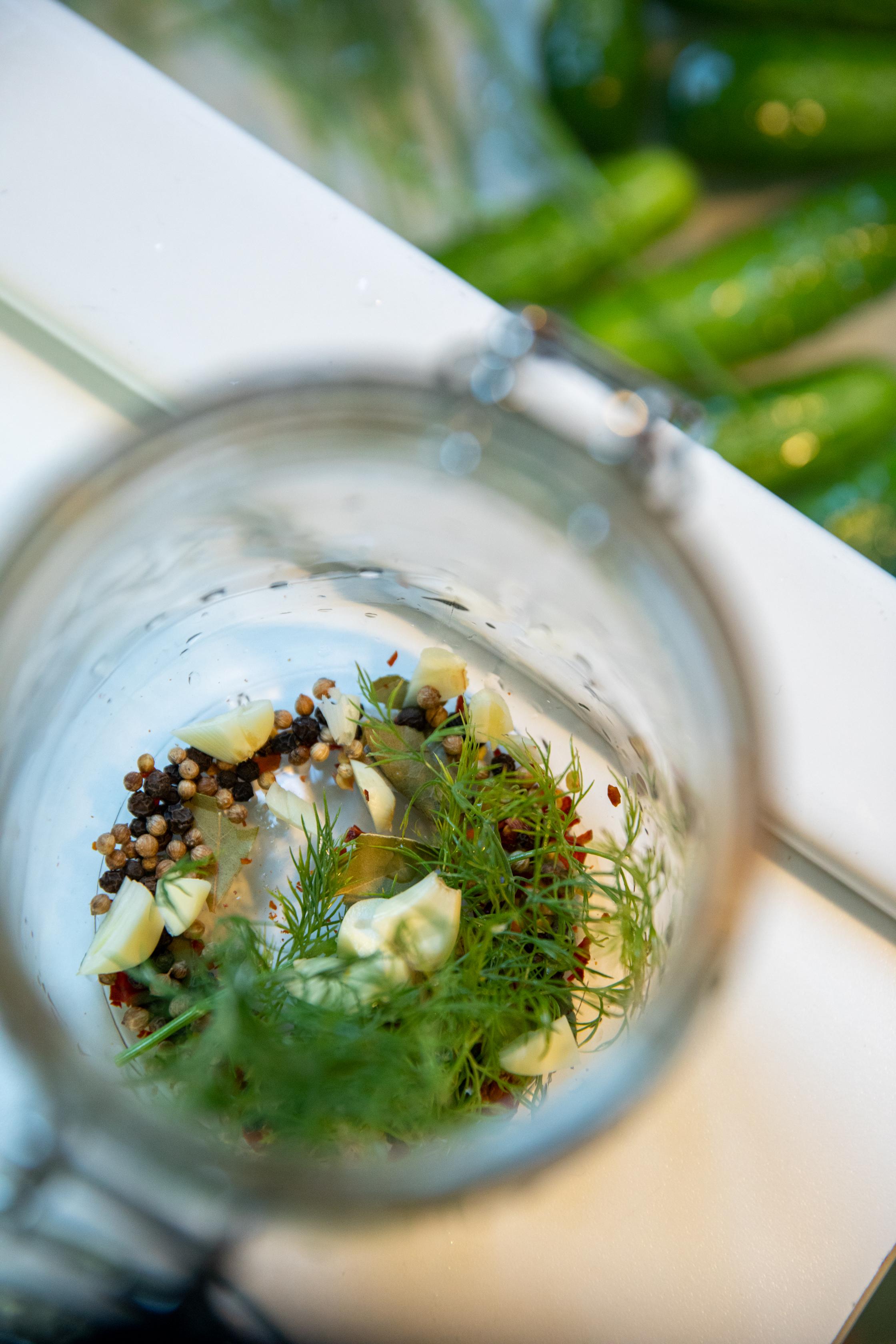 How to make pickles   leavethesandwich.com #picklerecipe #halfsourrecipe