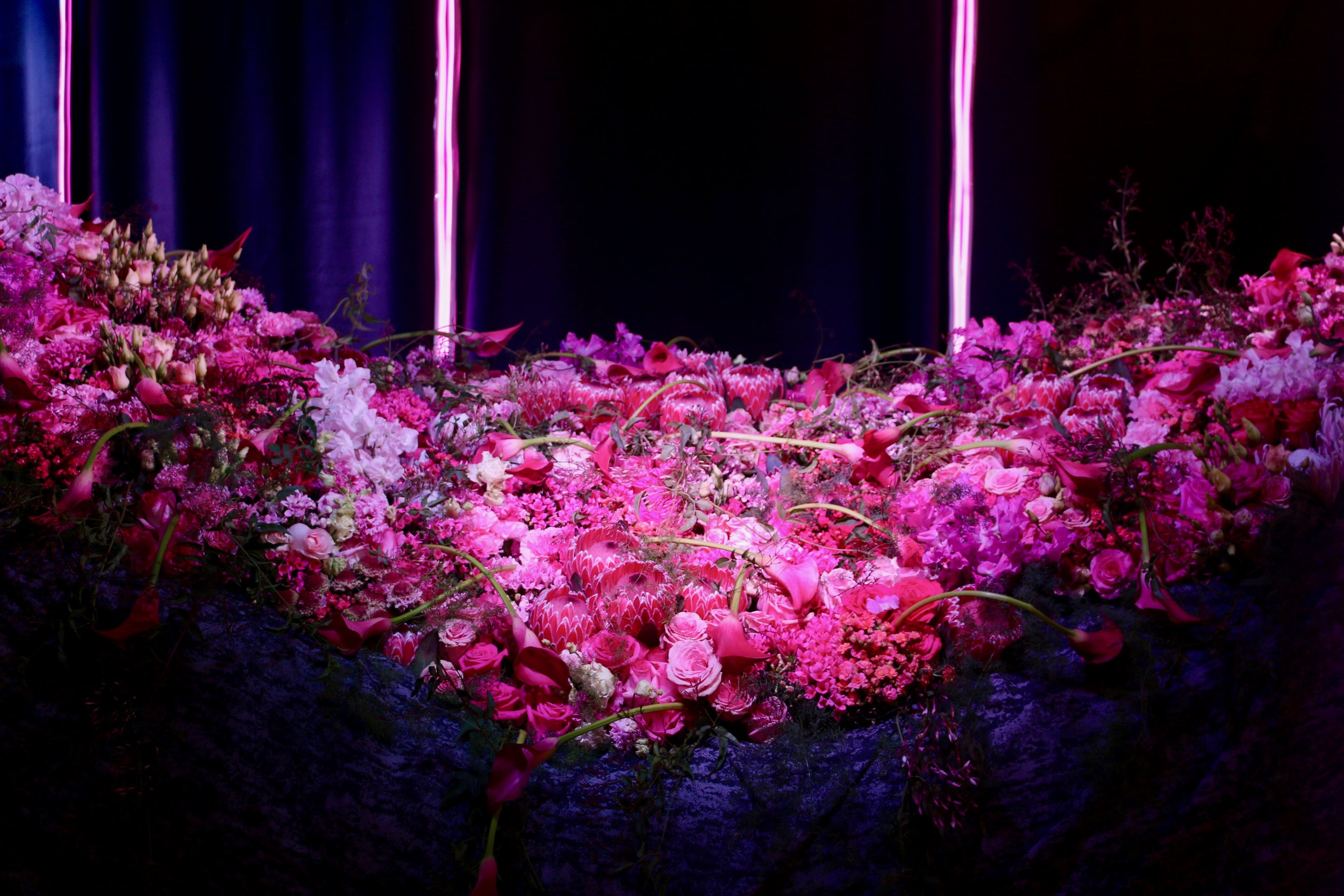 Titania's Bed. Philadelphia Flower Show, March 2019. Kristen Ghodsee