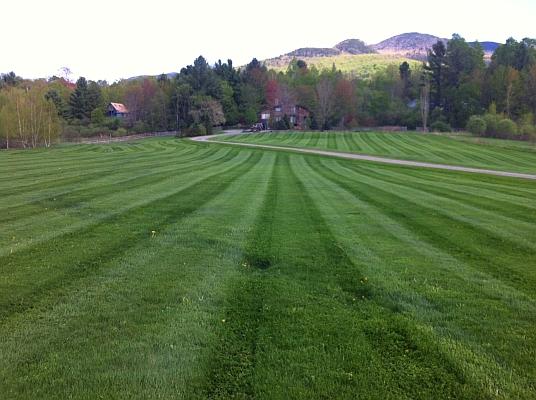 lawn-care-21.jpg