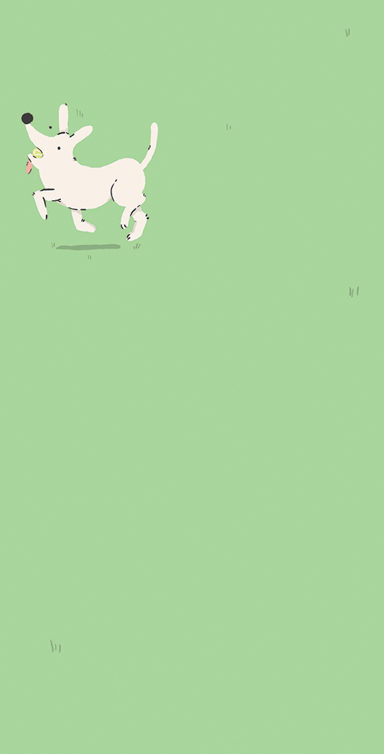 Fetch-2.jpg