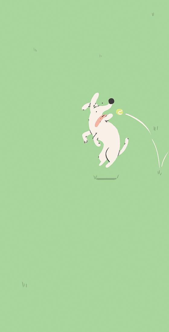 Fetch-3.jpg