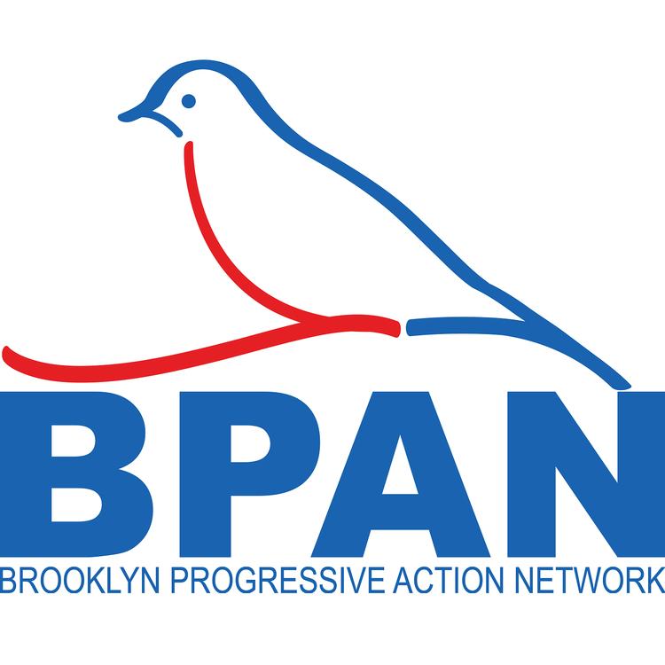 brooklyn_progressive_action_network.png