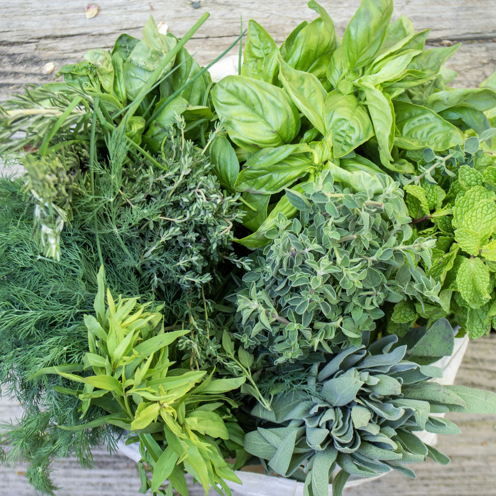 FRESH HERBS - Parsley, sage, rosemary and thyme.....plus cilantro,, mint, basil, and so much more.
