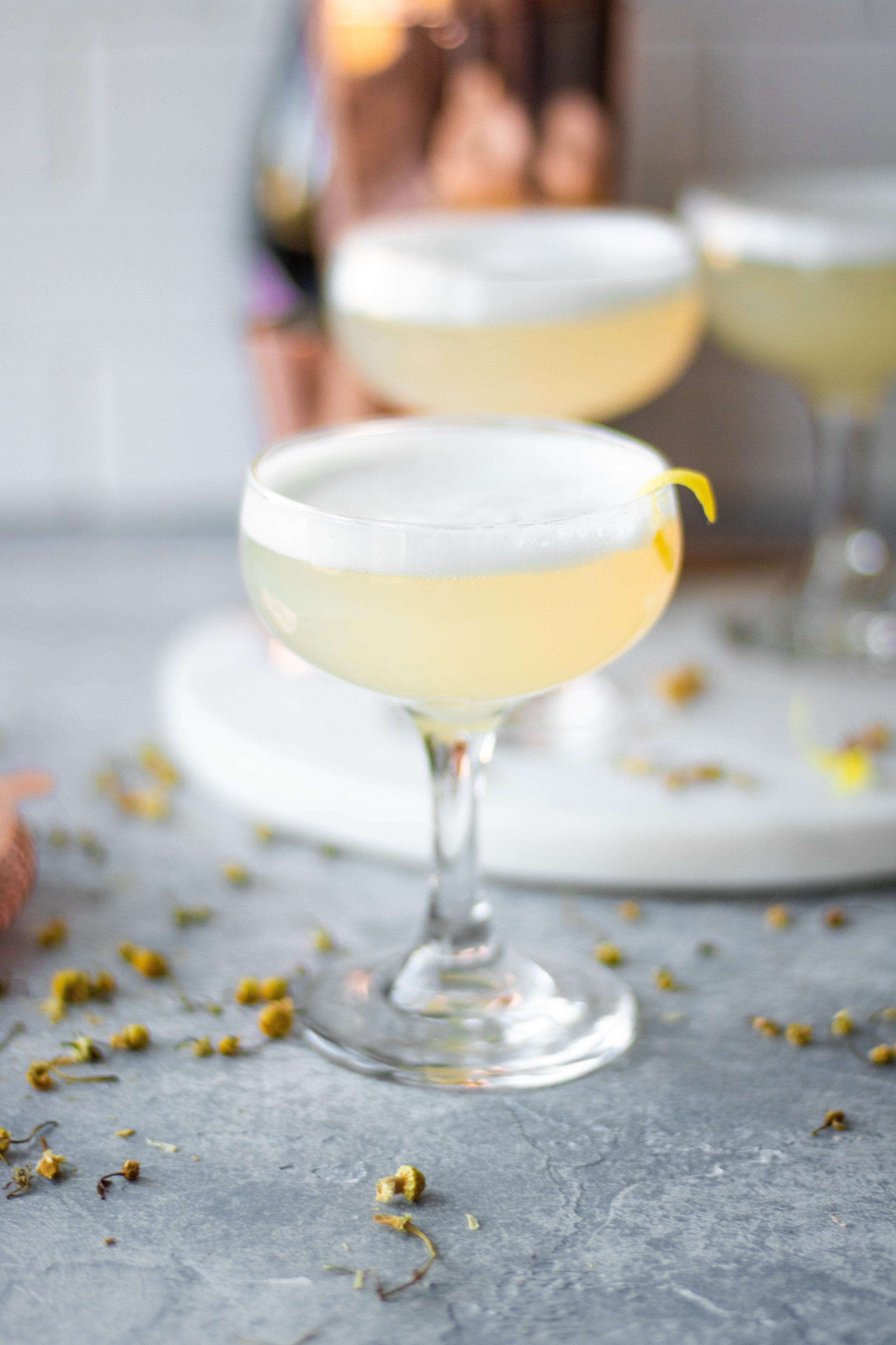 lemcham gin fizz5.jpg