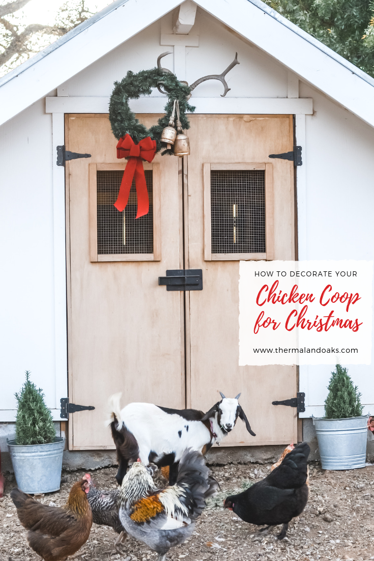 Chicken Coop: Christmas Edition
