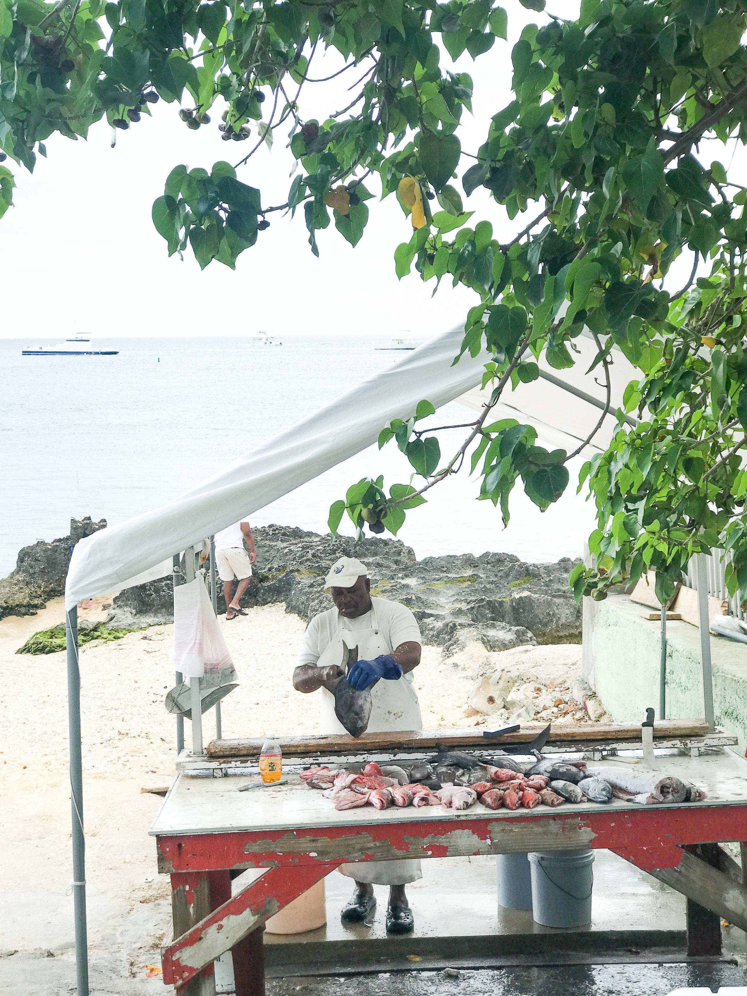 Fish Market at the Harbor