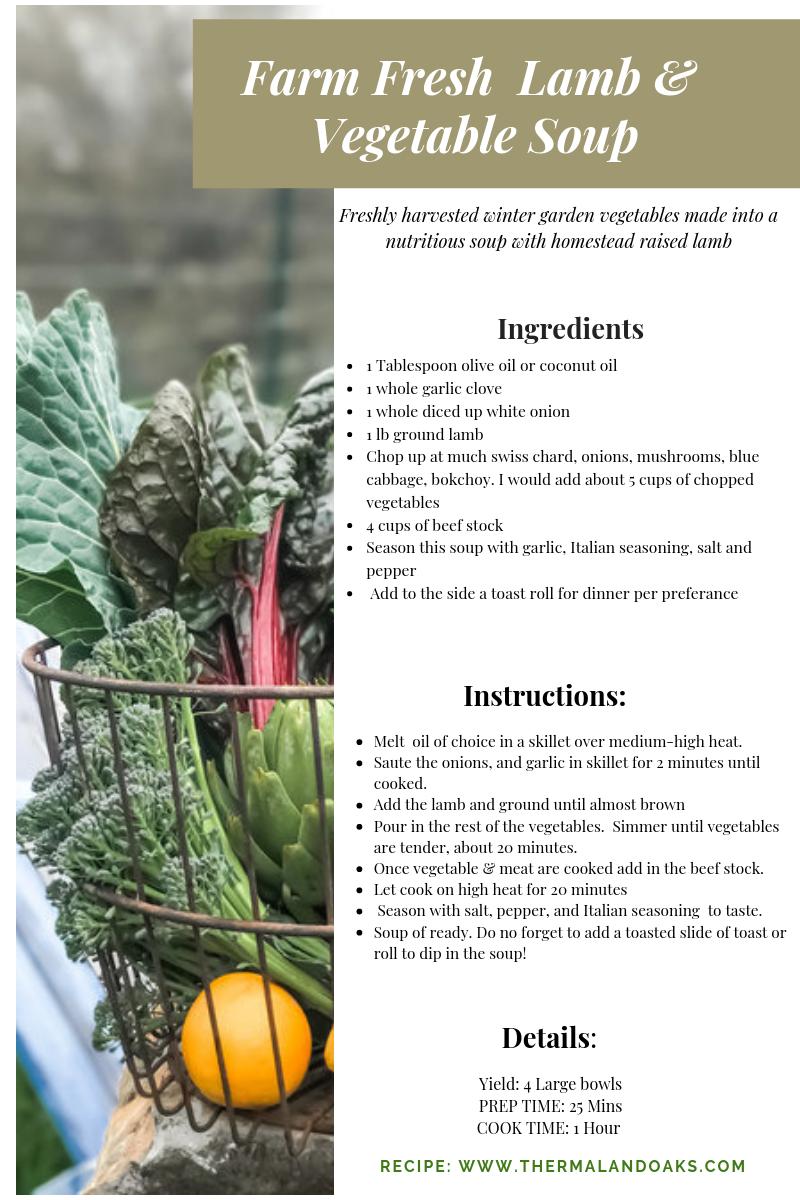 Farm to Fork Soup #farmtofork #nutrition #gardenfresh #farmtotable #farming #healthyfood #farmfresh #nutritionist