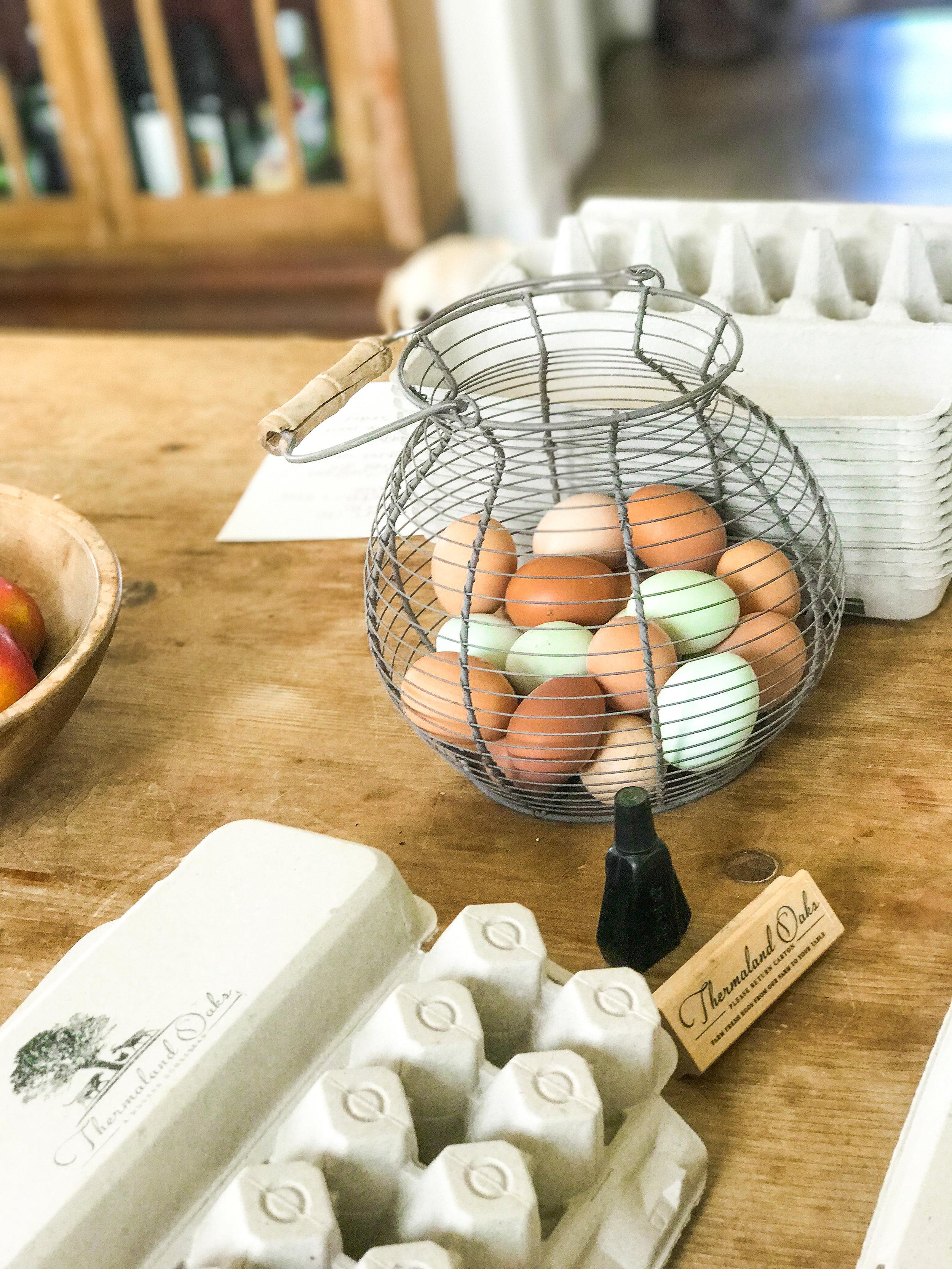 Rainbow Eggs, #rainboweggs, #eggs, #eggcolors, #farmfresheggs, #farmeggs, #rainbowfood, #blueeggs, #browneggs, #greeneggs, #oliveeggers, #spottedeggs, #nutrition