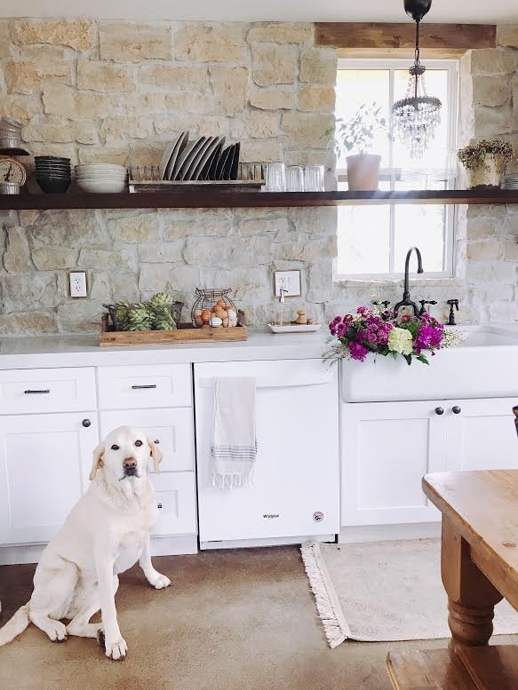 23.jpgFarmhouse decor #spring, #labrador, #basket, #farmhouse, #farmhousedecor #rockwall, #modernfarnhouse, #farmhousekitchem, #kitchendecor, #rock, #homesteading, #flowers, #farmfreshflowers