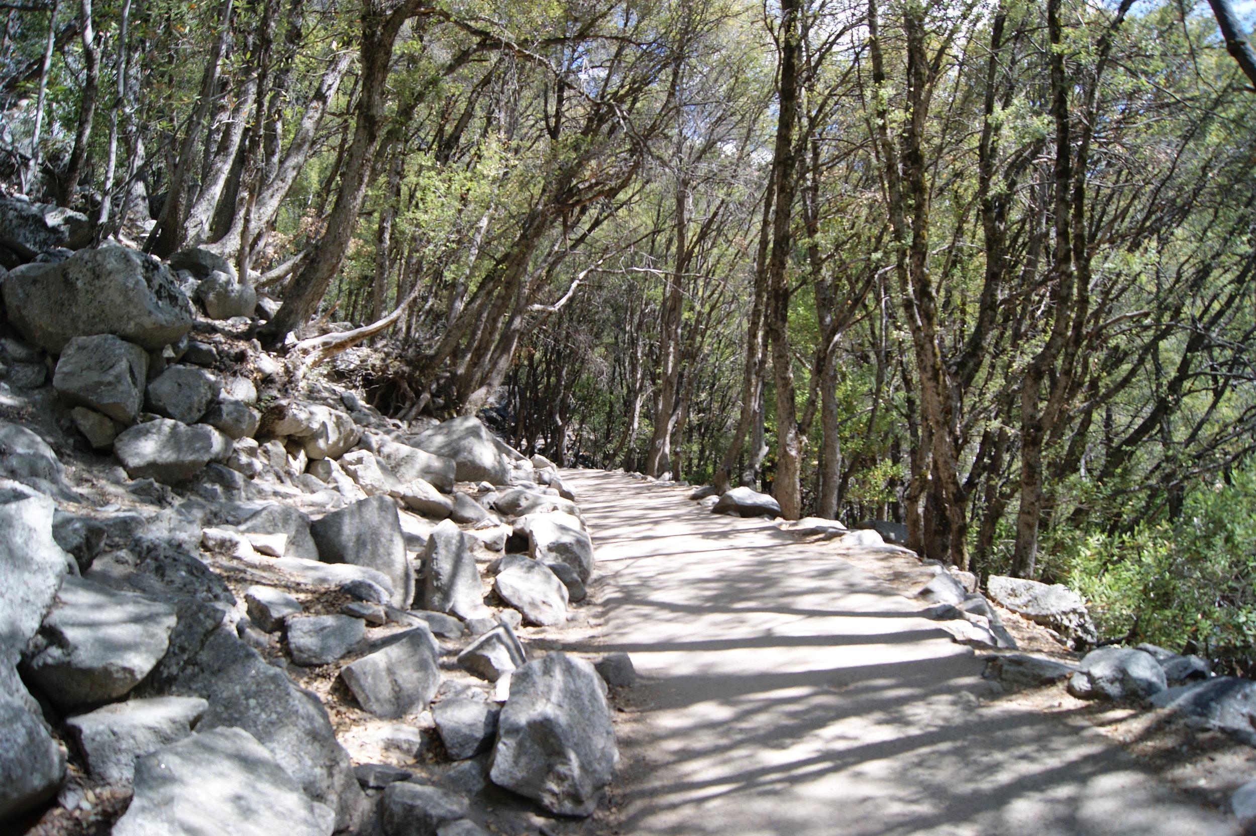 yosemite travel blogger national parks