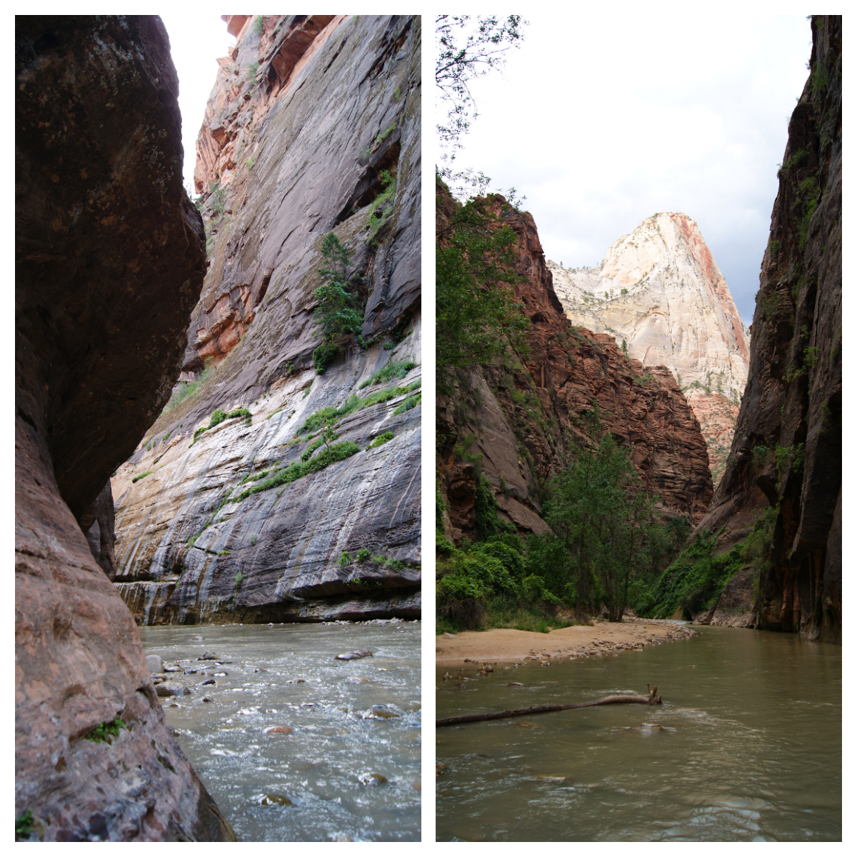 Zion narrows travel consultant