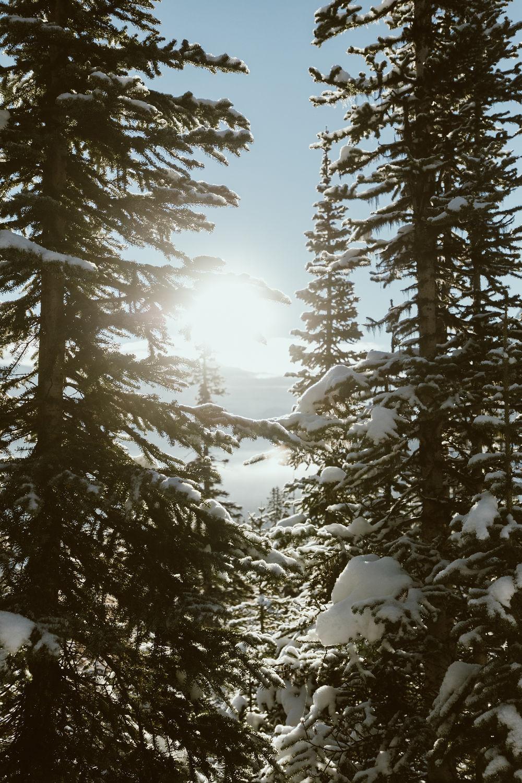 Banff_228.jpg