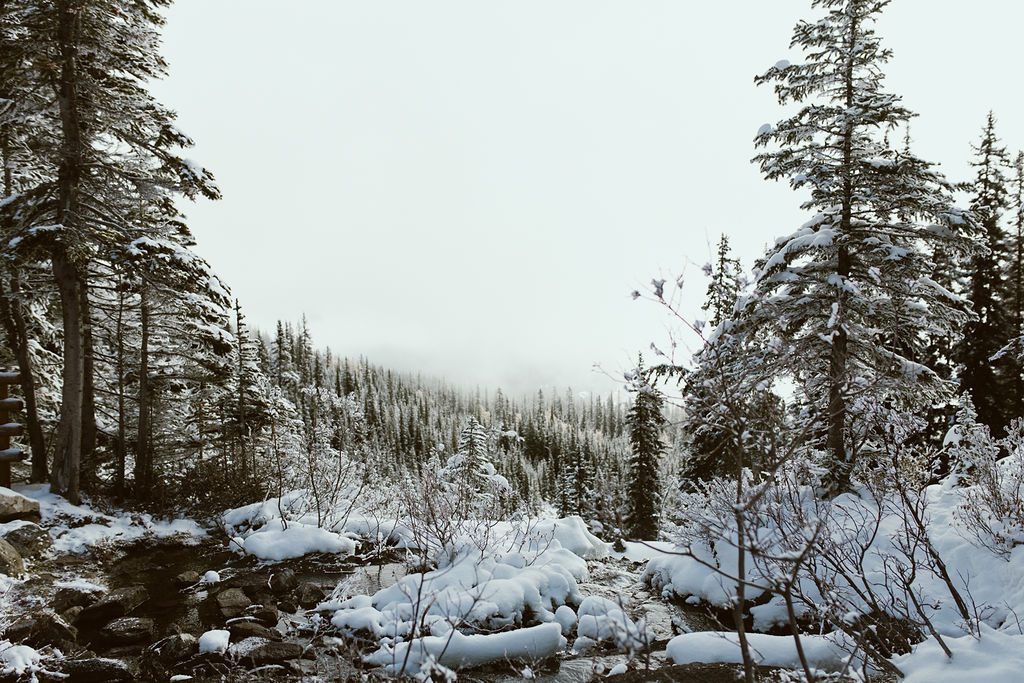 Banff_250.jpg