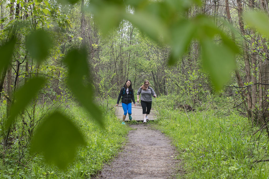 wandering-roots-yoga-travel-retreat-michigan-grand-rapids