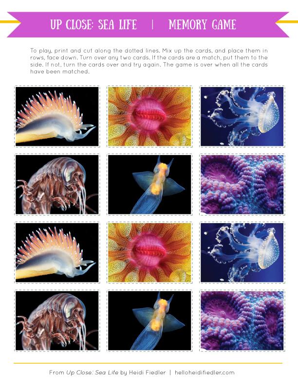 SeaLife-memorygame.jpg