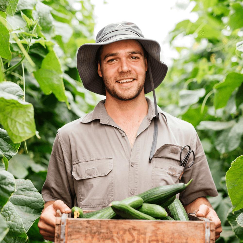 Farming_Brent.png
