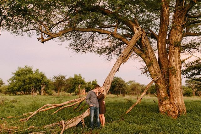 A lifetime, a lovetime. 💞⠀ .⠀ Image by @juliawinkler⠀ ~~~⠀ #lunikhygamefarm #bush #southafrica #wedding #weddinginspo #weddingphotography #couple #engaged #engagementshoot #coupleshoot #weddinglocation #nature #trees #bush #bushveld #weddinginspo #weddingaccommodation #naturewedding #weddingvenue #gamefarm #instagood #picoftheday
