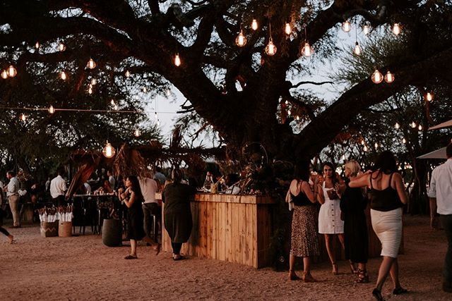 What do you get when you combine the sound of cicadas, gorgeously giant trees and the people you love the most? Plan your wedding with us to find out. 👋⠀ Image by @shanygreenephotpgraphy⠀ Styling by @bish_bash_boosh⠀ Furniture by @reservedexclusive⠀ Lights by @saltnpepper_creative⠀ ~~~~~~⠀ #lunikhy #gamefarm #bush #bushgetaways #bushweddings #wedding #nature #naturewedding #outdoorwedding #weddinglocation #weddingsetting #views #evening #weddingguests #trees #weddingplanning #weddingseating #seatingplan #weddingcatering #weddinginspo #photography #picoftheday #instagood
