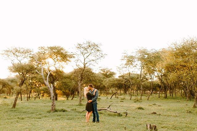 All is love, all is light, all is bright. 💫⠀ .⠀ Image by @julia_winkler ⠀ ~~~⠀ #lunikhygamefarm #bush #southafrica #wedding #weddinginspo #weddingphotography #couple #engaged #engagementshoot #coupleshoot #weddinglocation #nature #trees #bush #bushveld #weddinginspo #weddingaccommodation #naturewedding #weddingvenue #gamefarm #instagood #picoftheday