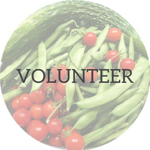 Backyard GardenShare - Volunteer