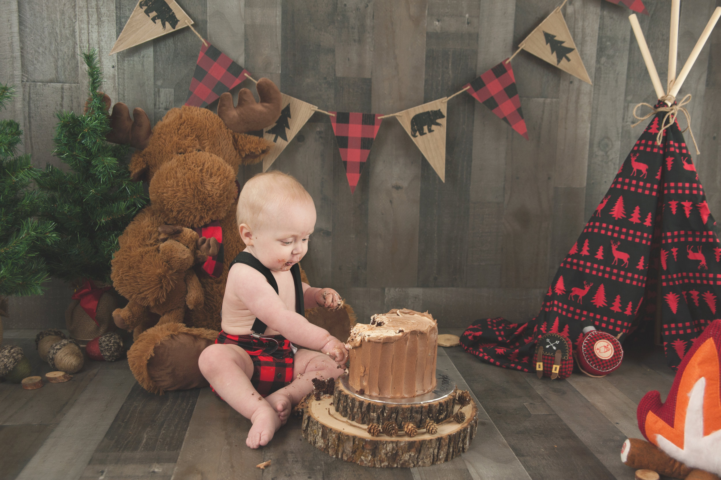 End the first year with a one of a kind Cake Smash Session!