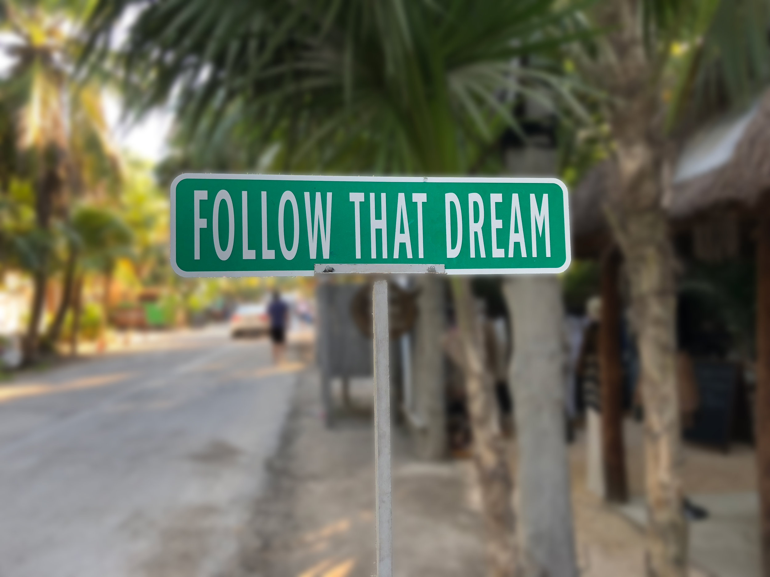 Follow_that_dream_BlurREV.jpg