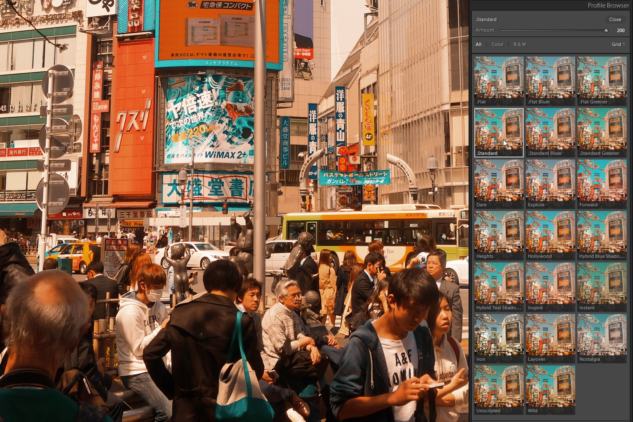 Choose from 20 orange and teal Lightroom profiles. - With the Studio version, you'll get all 20 cinematic orange and teal profiles with opacity support. Also included is a user guide describing each profile and how they affect colors.