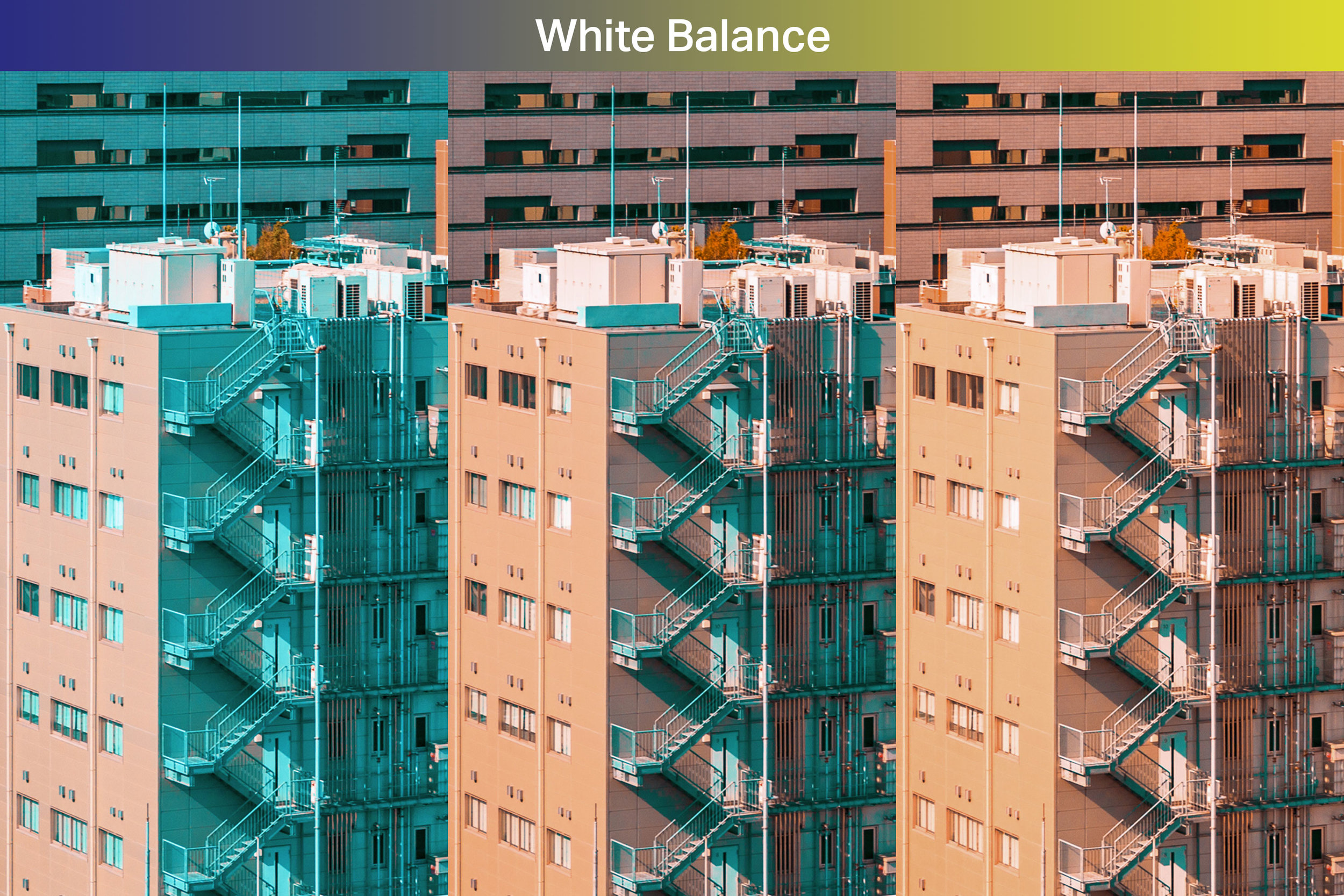 Easily adjust the orange and teal balance. - Control how much orange or teal your image simply by changing the white balance.
