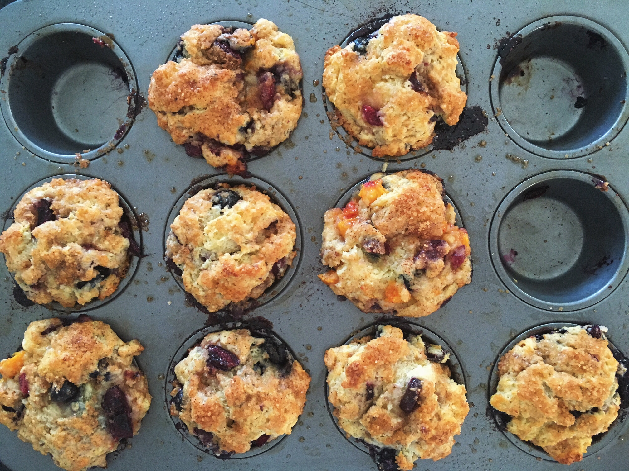 Muffins with peaches and blueberries from the Bhumi Farms CSA last summer