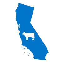CaliforniaCow.png